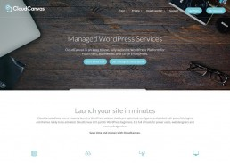 Lakewood WordPress Consultancy and Managed WordPress Services
