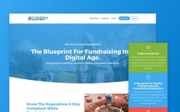 Fundraising Blueprint